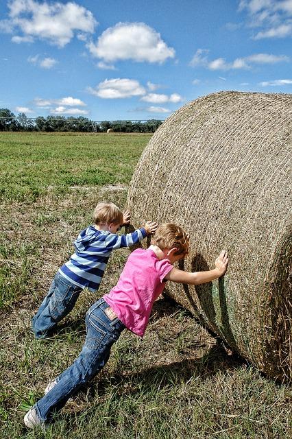 kids-work-for-money
