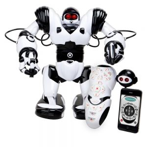 Playing Robosapien-x-robot kit by wowwee toy